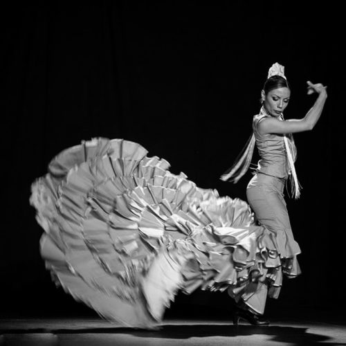 FLAMENCO adultos sara lobo